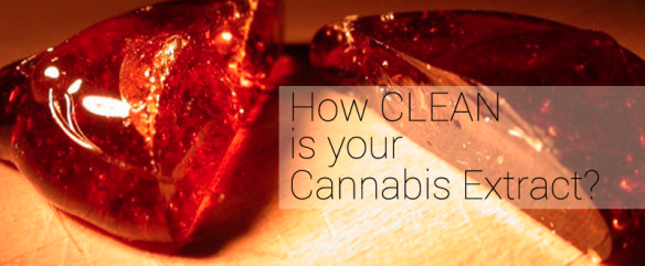 how clean is your cannabis extract