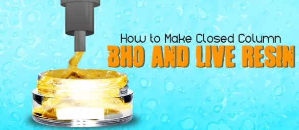 how-to-make-Bho-and-live-resin