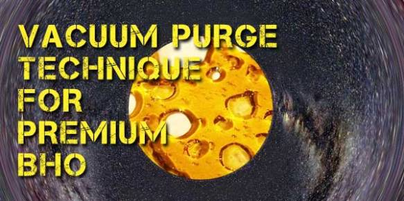 Vacuum-Purge-Basics-for-Premium-Homemade-BHO