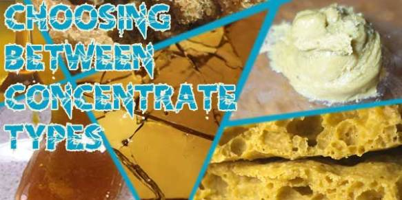 Marijuana-Concentrates-Offer-Many-Choices